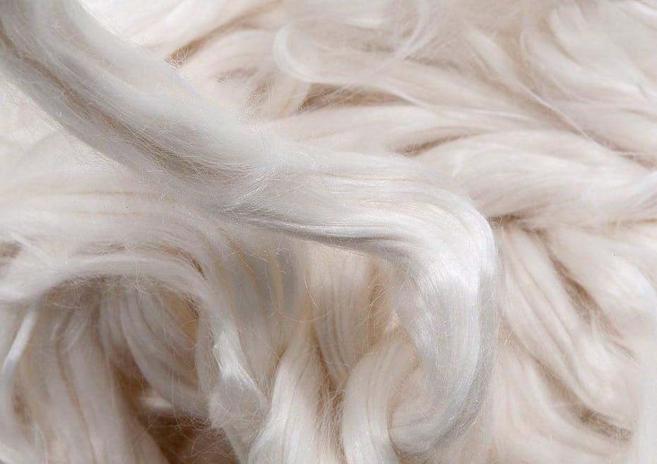 modal fiber